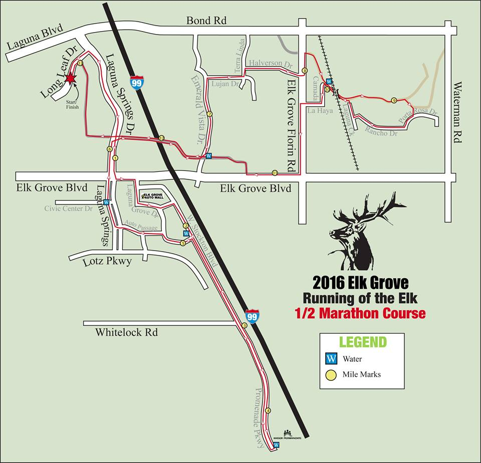Running of the Elk Half Marathon